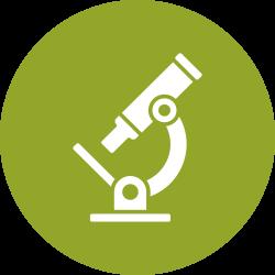 Icon kính hiển vi
