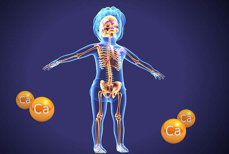 Canxi chiếm 99% trong xương và răng ở cơ thể người