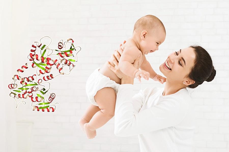 Lactoferrin giúp tăng cường hệ miễn dịch ở trẻ sơ sinh