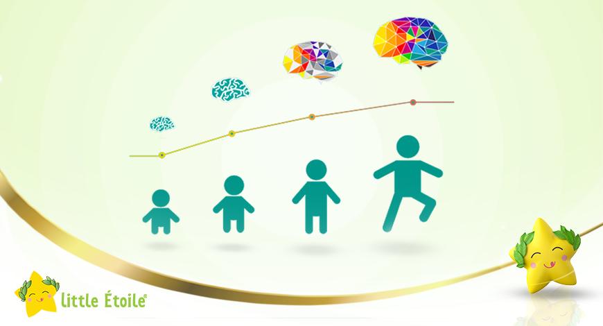 Trí não của trẻ phát triển theo từng giai đoạn